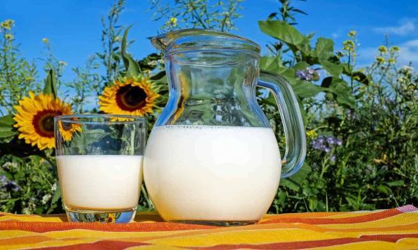 شرب اللبن في المنام للعزباء أو شراء الحليب دون شربه