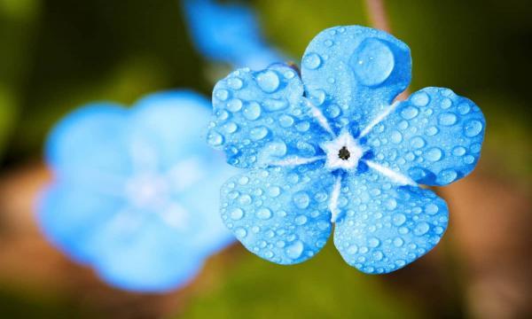 دعاء نزول المطر الشديد قصير مستجاب من السنة